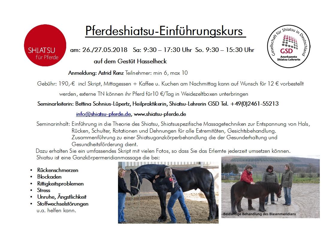 Großzügig Pferd Fessel Anatomie Bilder - Anatomie Von Menschlichen ...
